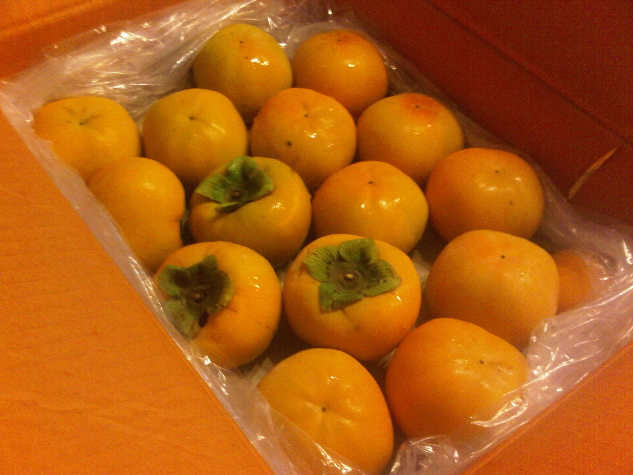 how to grow persimmon in philippines
